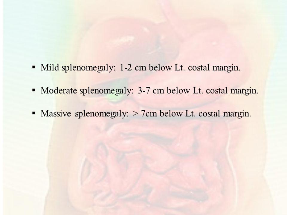  Mild splenomegaly: 1-2 cm below Lt.costal margin.
