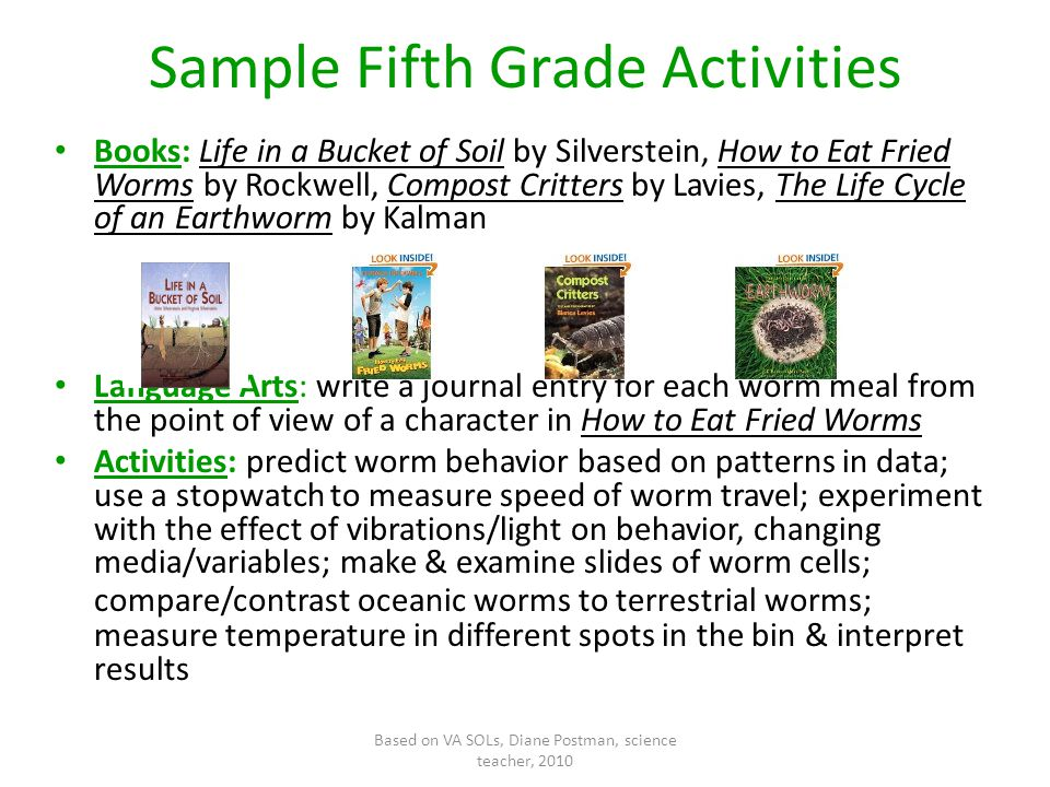 Based on VA SOLs, Diane Postman, science teacher, 2010 Sample Fifth Grade Activities Books: Life in a Bucket of Soil by Silverstein, How to Eat Fried Worms by Rockwell, Compost Critters by Lavies, The Life Cycle of an Earthworm by Kalman Language Arts: write a journal entry for each worm meal from the point of view of a character in How to Eat Fried Worms Activities: predict worm behavior based on patterns in data; use a stopwatch to measure speed of worm travel; experiment with the effect of vibrations/light on behavior, changing media/variables; make & examine slides of worm cells; compare/contrast oceanic worms to terrestrial worms; measure temperature in different spots in the bin & interpret results