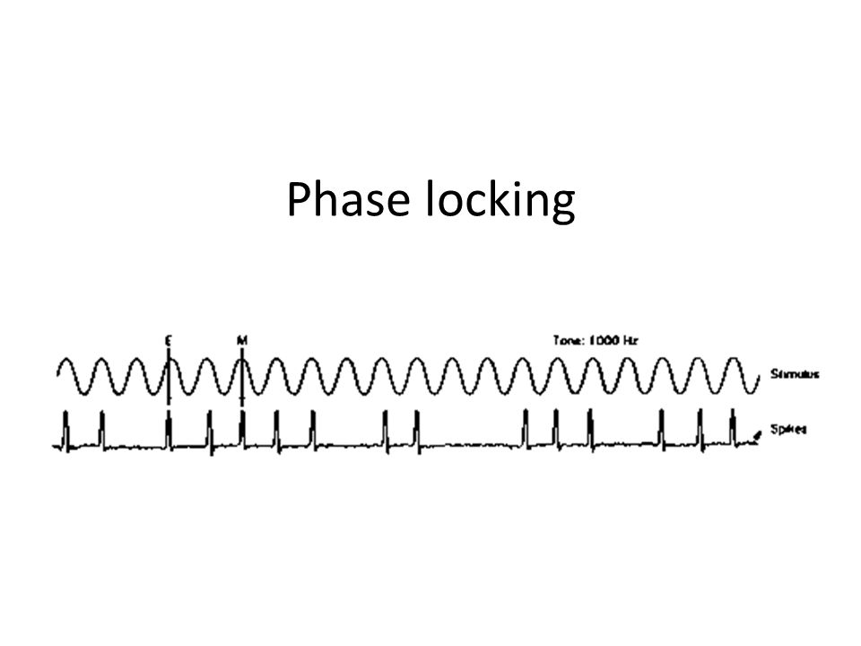 Phase locking