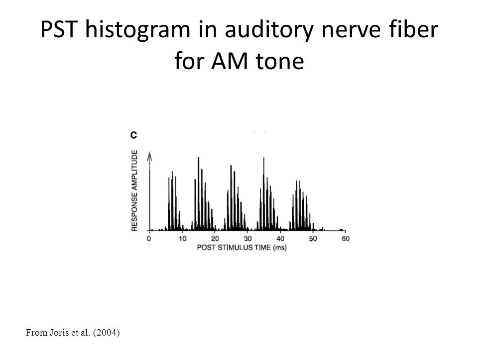 PST histogram in auditory nerve fiber for AM tone From Joris et al. (2004)