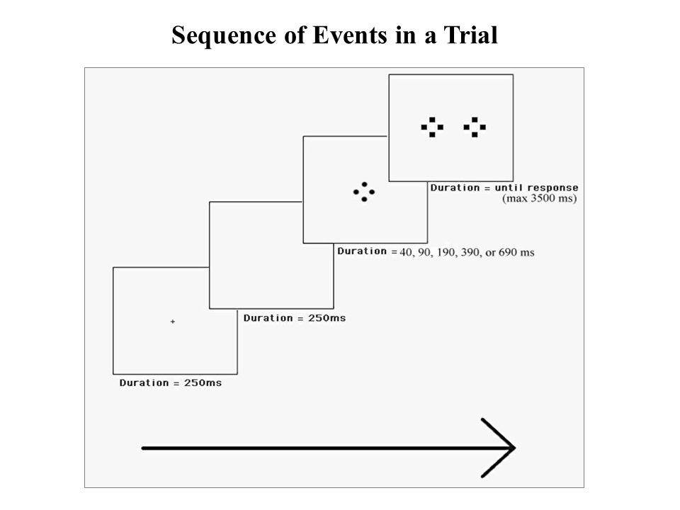 Sequence of Events in a Trial