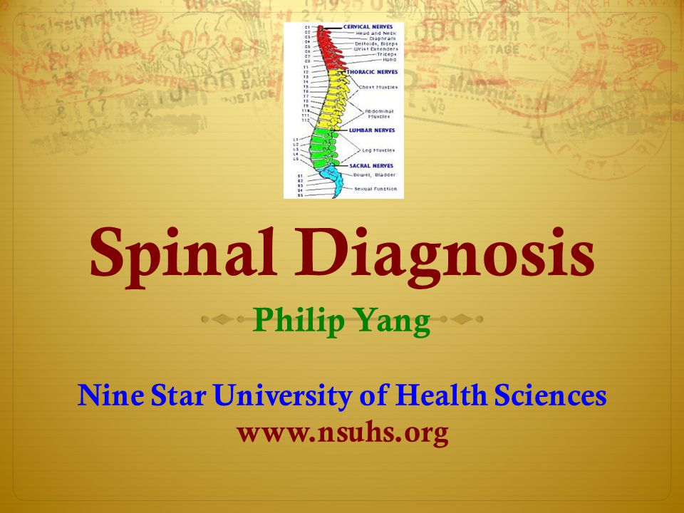 Spinal Diagnosis Philip Yang Nine Star University of Health Sciences www.nsuhs.org