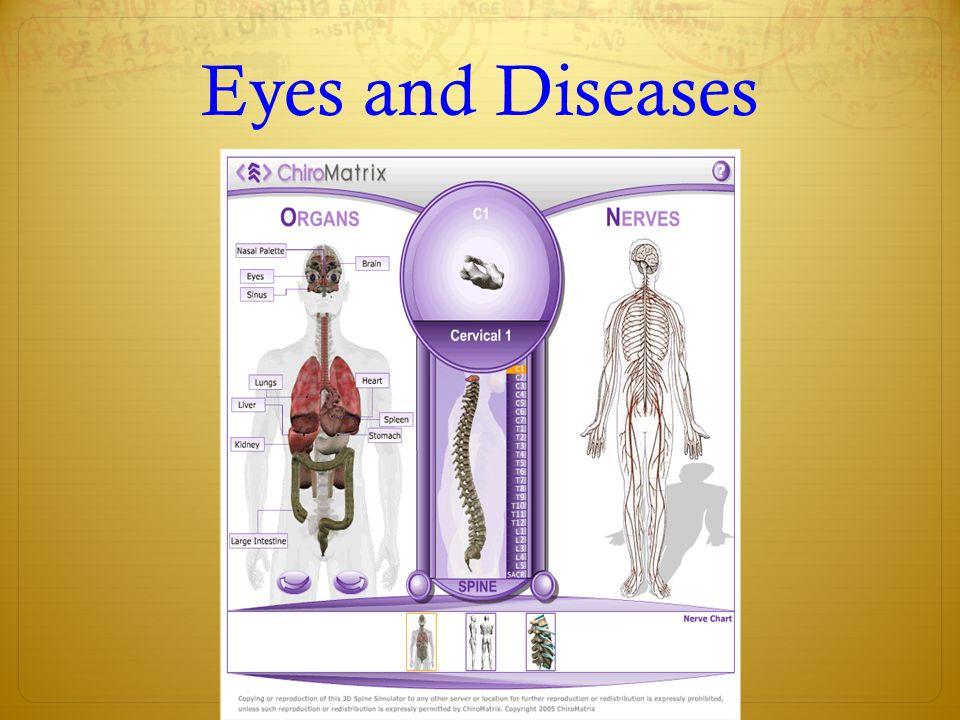 Eyes and Diseases