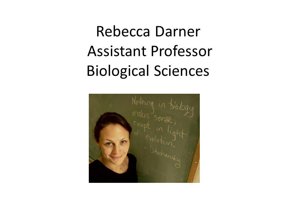 Rebecca Darner Assistant Professor Biological Sciences