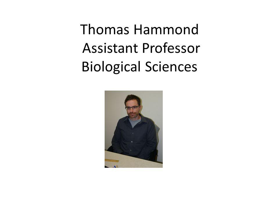 Thomas Hammond Assistant Professor Biological Sciences