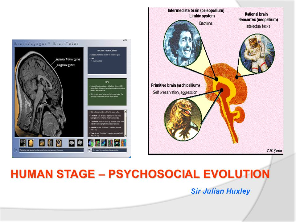 HUMAN STAGE – PSYCHOSOCIAL EVOLUTION Sir Julian Huxley