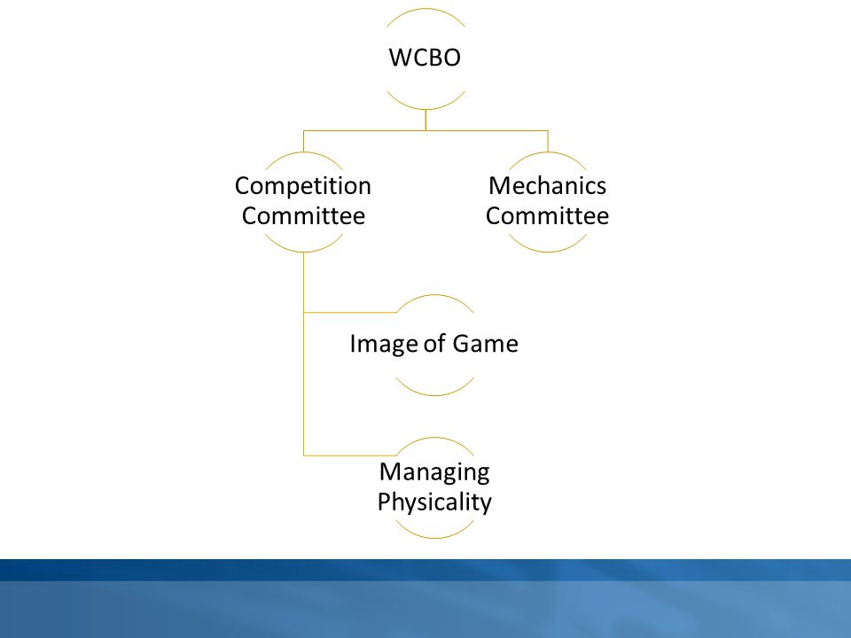 WCBO Competition Committee Image of Game Managing Physicality Mechanics Committee