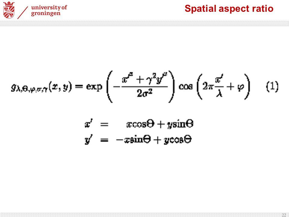 22 Spatial aspect ratio