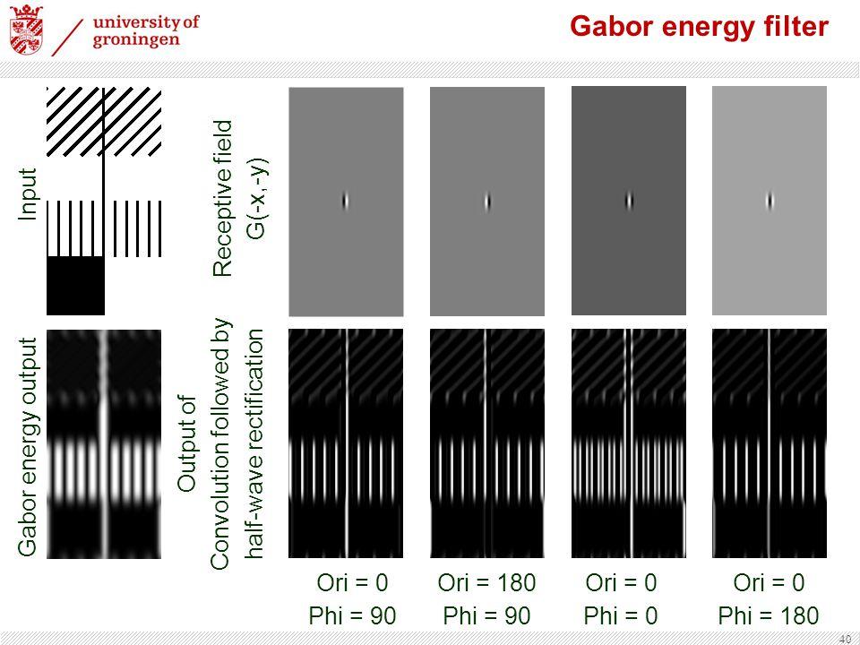 40 Input Gabor energy filter Ori = 0 Phi = 90 Ori = 180 Phi = 90 Ori = 0 Phi = 0 Ori = 0 Phi = 180 Receptive field G(-x,-y) Output of Convolution followed by half-wave rectification Gabor energy output