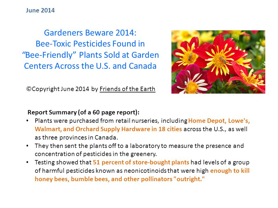 Report Summary (of a 60 page report): Plants were purchased from retail nurseries, including Home Depot, Lowe s, Walmart, and Orchard Supply Hardware in 18 cities across the U.S., as well as three provinces in Canada.