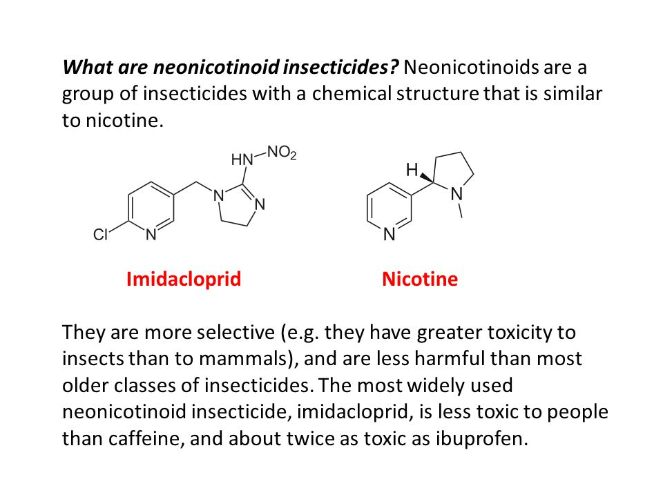 What are neonicotinoid insecticides? Neonicotinoids are a group of insecticides with a chemical structure that is similar to nicotine. Imidacloprid Ni