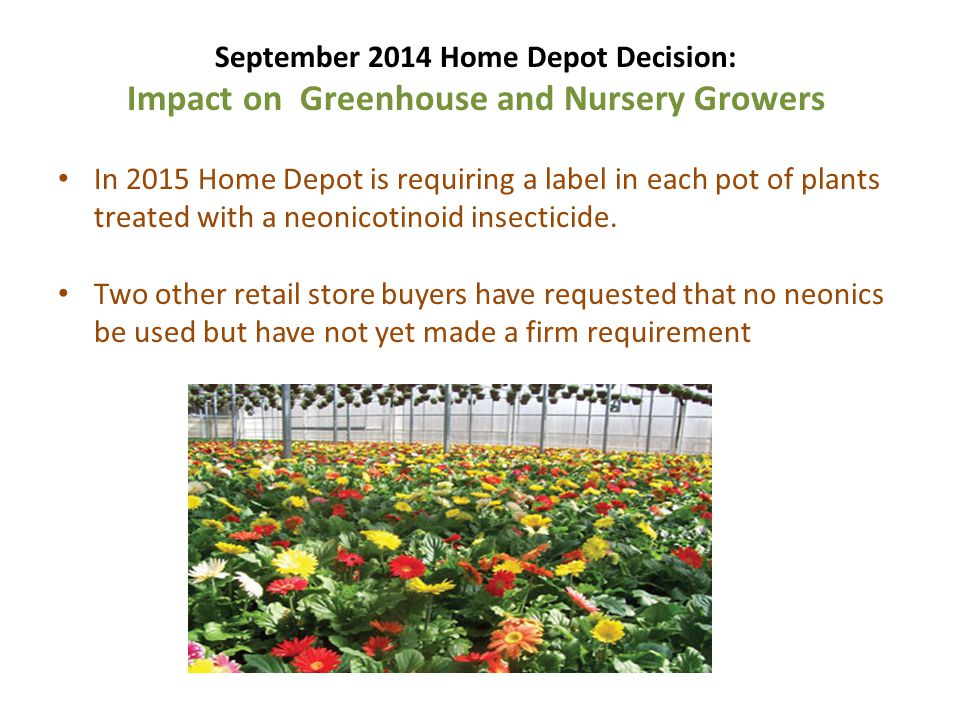 September 2014 Home Depot Decision: Impact on Greenhouse and Nursery Growers In 2015 Home Depot is requiring a label in each pot of plants treated wit