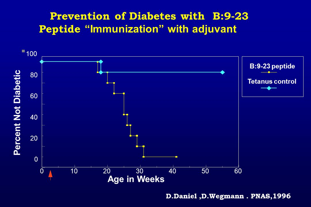 Prevention of Diabetes with B:9-23 Peptide Immunization with adjuvant 0102030405060 0 20 40 60 80 100 Age in Weeks Percent Not Diabetic Tetanus control B:9-23 peptide D.Daniel,D.Wegmann.