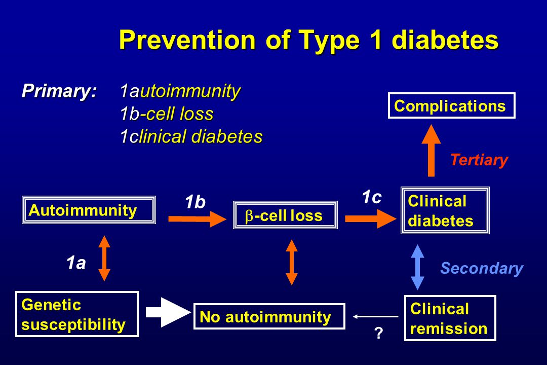 Prevention of Type 1 diabetes Primary: 1autoimmunity 1b-cell loss 1clinical diabetes Prevention of Type 1 diabetes Primary: 1autoimmunity 1b-cell loss 1clinical diabetes Genetic susceptibility Autoimmunity No autoimmunity Clinical diabetes Complications Clinical remission 1c Secondary 1a 1b  -cell loss Tertiary