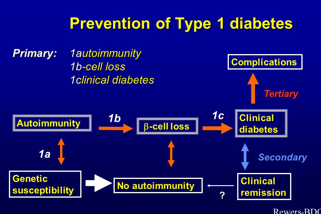 Prevention of Type 1 diabetes Primary: 1autoimmunity 1b-cell loss 1clinical diabetes Prevention of Type 1 diabetes Primary: 1autoimmunity 1b-cell loss 1clinical diabetes Genetic susceptibility Autoimmunity No autoimmunity Clinical diabetes Complications Clinical remission 1c Secondary 1a 1b  -cell loss Tertiary .