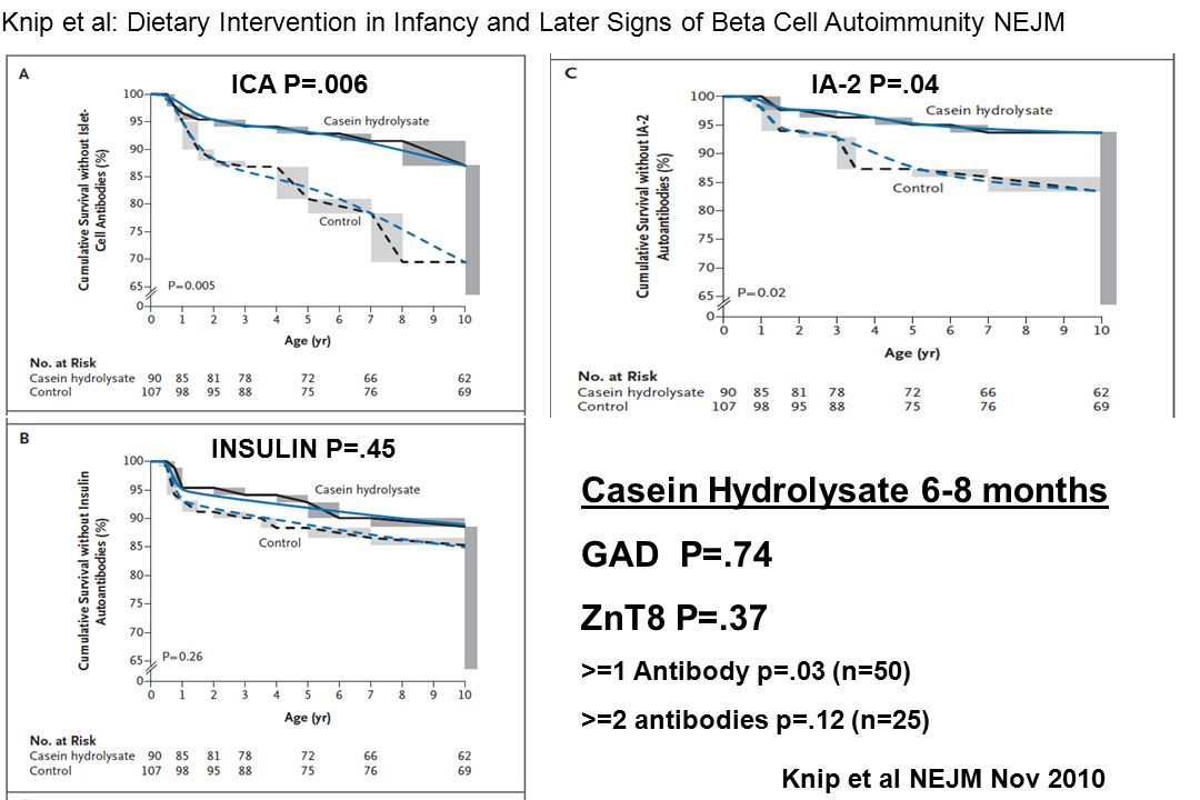 Knip et al: Dietary Intervention in Infancy and Later Signs of Beta Cell Autoimmunity NEJM Casein Hydrolysate 6-8 months GAD P=.74 ZnT8 P=.37 >=1 Antibody p=.03 (n=50) >=2 antibodies p=.12 (n=25) ICA P=.006 INSULIN P=.45 IA-2 P=.04 Knip et al NEJM Nov 2010