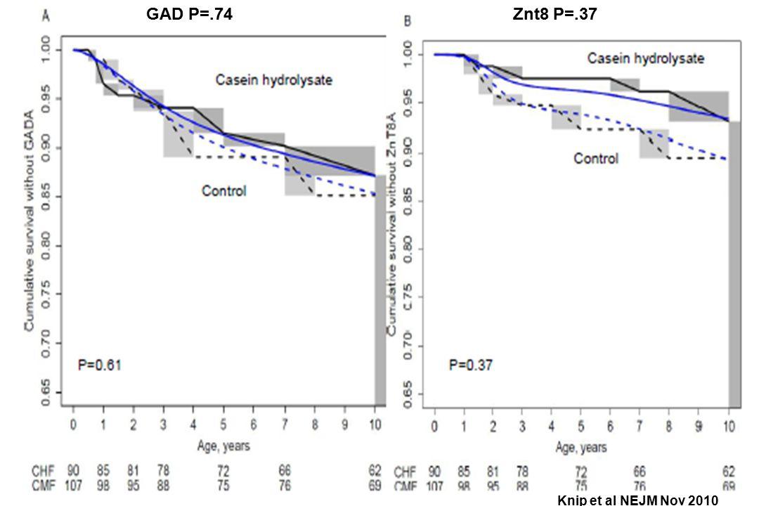 GAD P=.74Znt8 P=.37 Knip et al NEJM Nov 2010