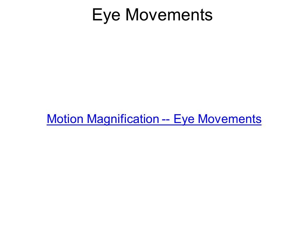 Eye Movements Motion Magnification -- Eye Movements