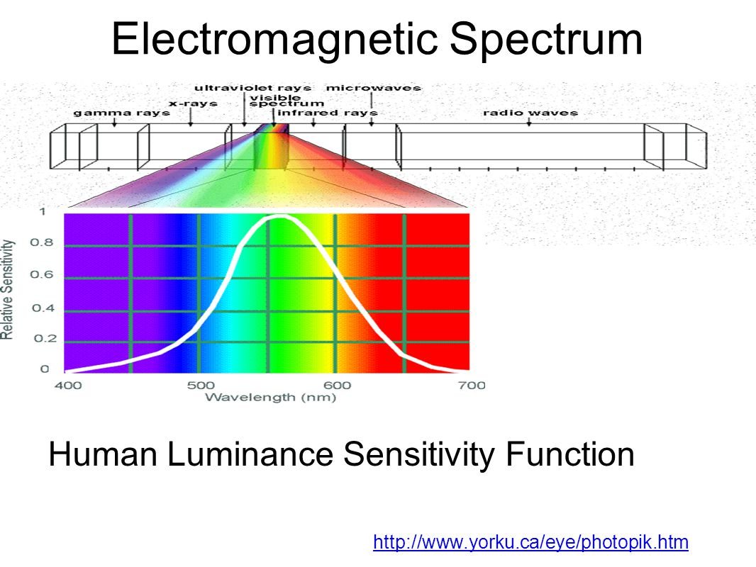 Electromagnetic Spectrum http://www.yorku.ca/eye/photopik.htm Human Luminance Sensitivity Function