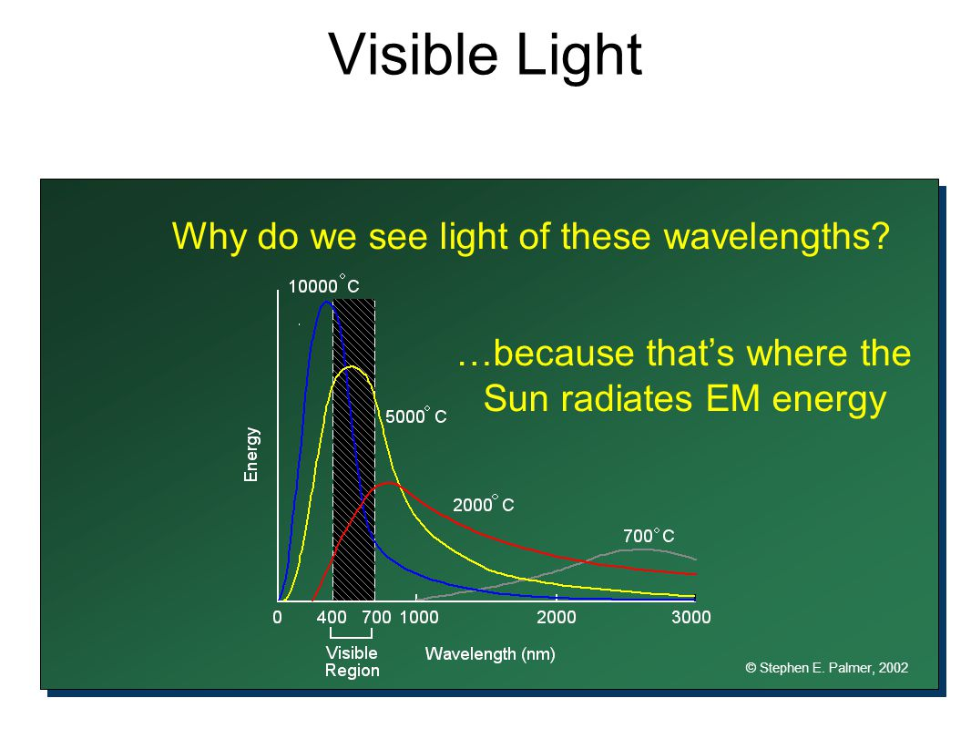 Why do we see light of these wavelengths? © Stephen E. Palmer, 2002 …because that's where the Sun radiates EM energy Visible Light