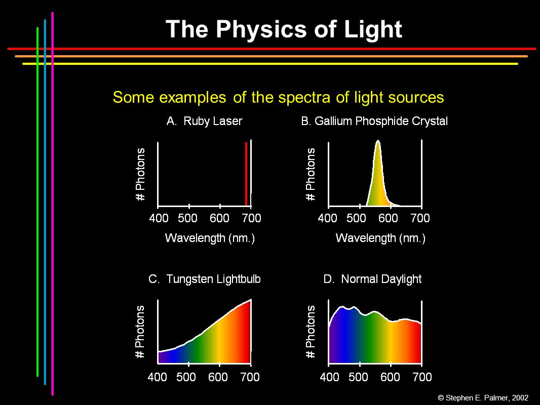 The Physics of Light Some examples of the spectra of light sources © Stephen E. Palmer, 2002