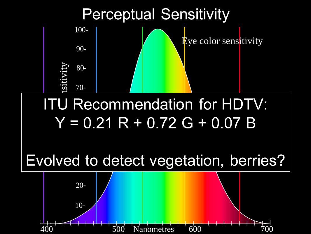 Perceptual Sensitivity ITU Recommendation for HDTV: Y = 0.21 R + 0.72 G + 0.07 B Evolved to detect vegetation, berries?
