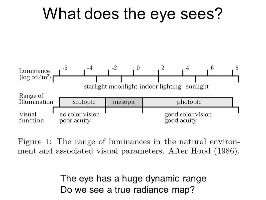 What does the eye sees? The eye has a huge dynamic range Do we see a true radiance map?