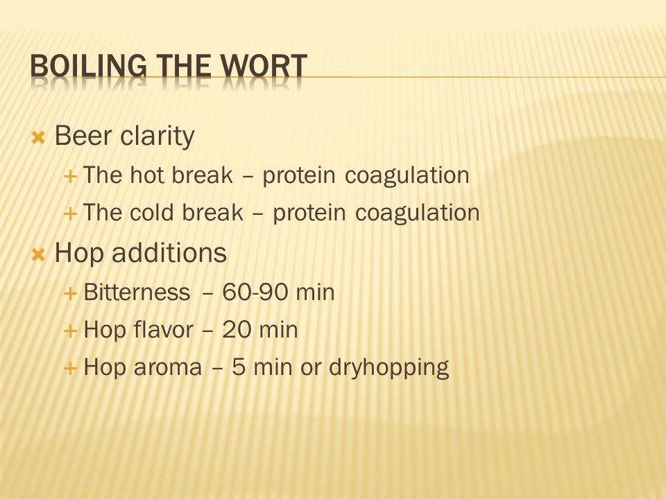  Beer clarity  The hot break – protein coagulation  The cold break – protein coagulation  Hop additions  Bitterness – 60-90 min  Hop flavor – 20