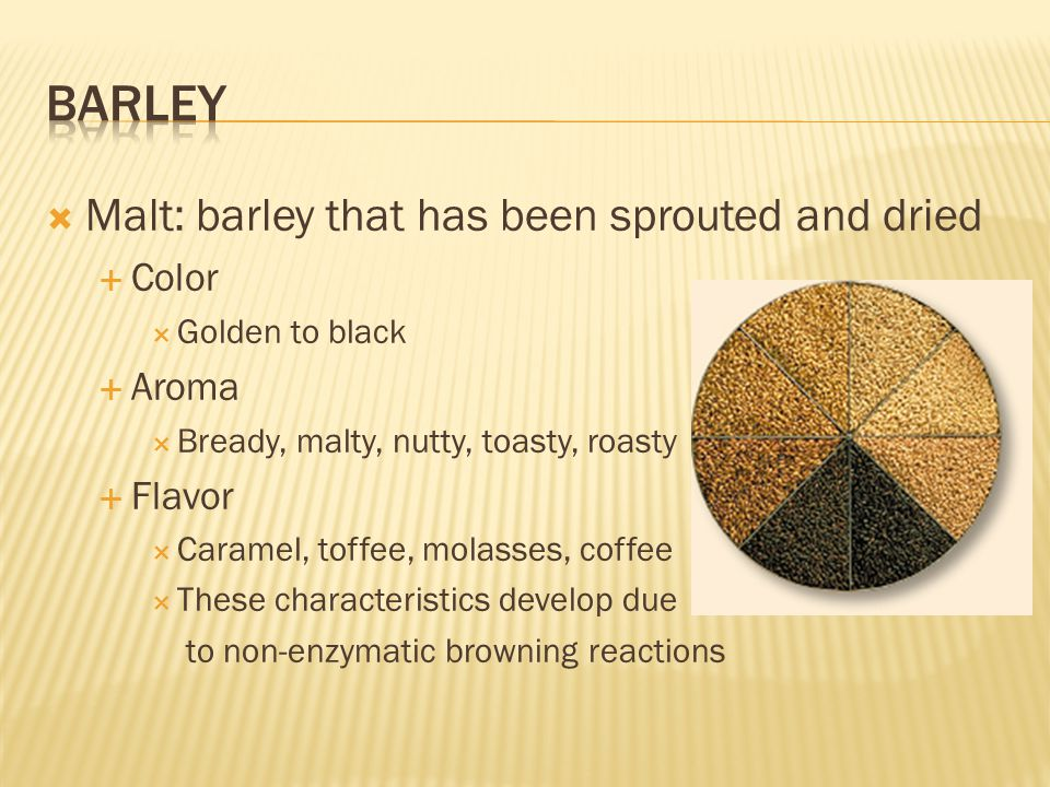  Malt: barley that has been sprouted and dried  Color  Golden to black  Aroma  Bready, malty, nutty, toasty, roasty  Flavor  Caramel, toffee, m