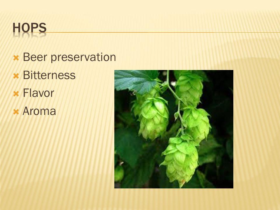  Beer preservation  Bitterness  Flavor  Aroma