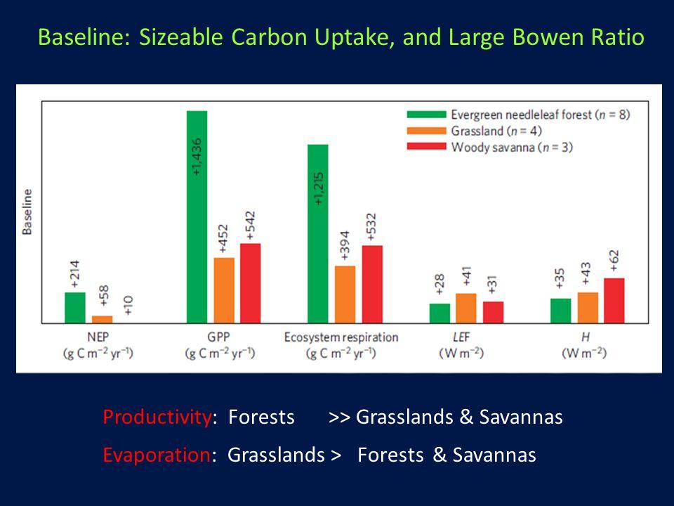 Baseline: Sizeable Carbon Uptake, and Large Bowen Ratio Productivity: Forests >> Grasslands & Savannas Evaporation: Grasslands > Forests & Savannas
