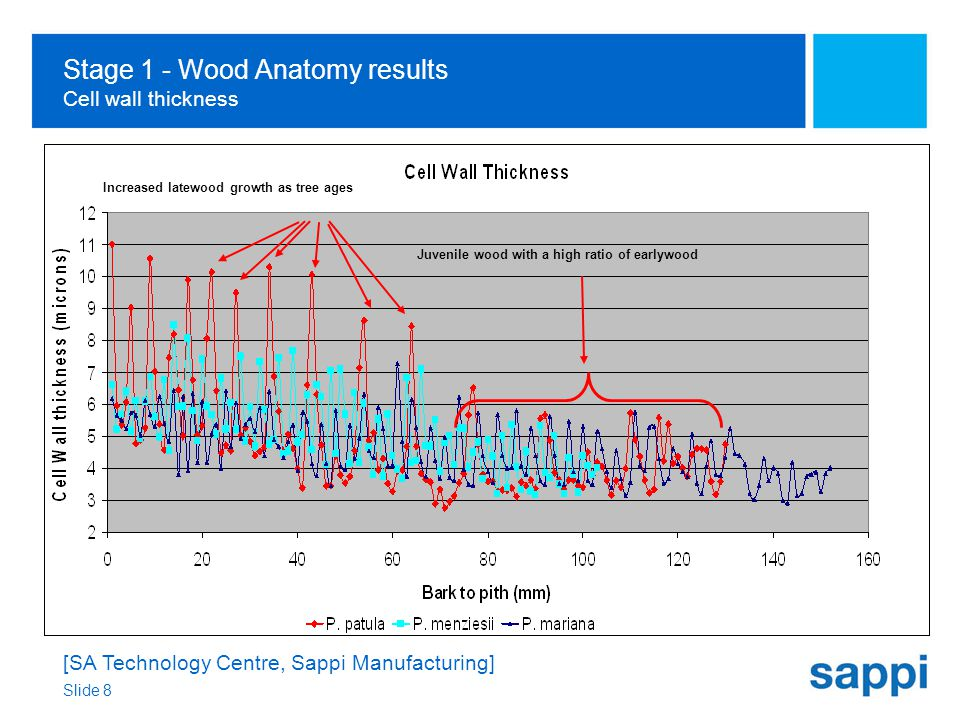 [SA Technology Centre, Sappi Manufacturing] Slide 8 Stage 1 - Wood Anatomy results Cell wall thickness Juvenile wood with a high ratio of earlywood Increased latewood growth as tree ages