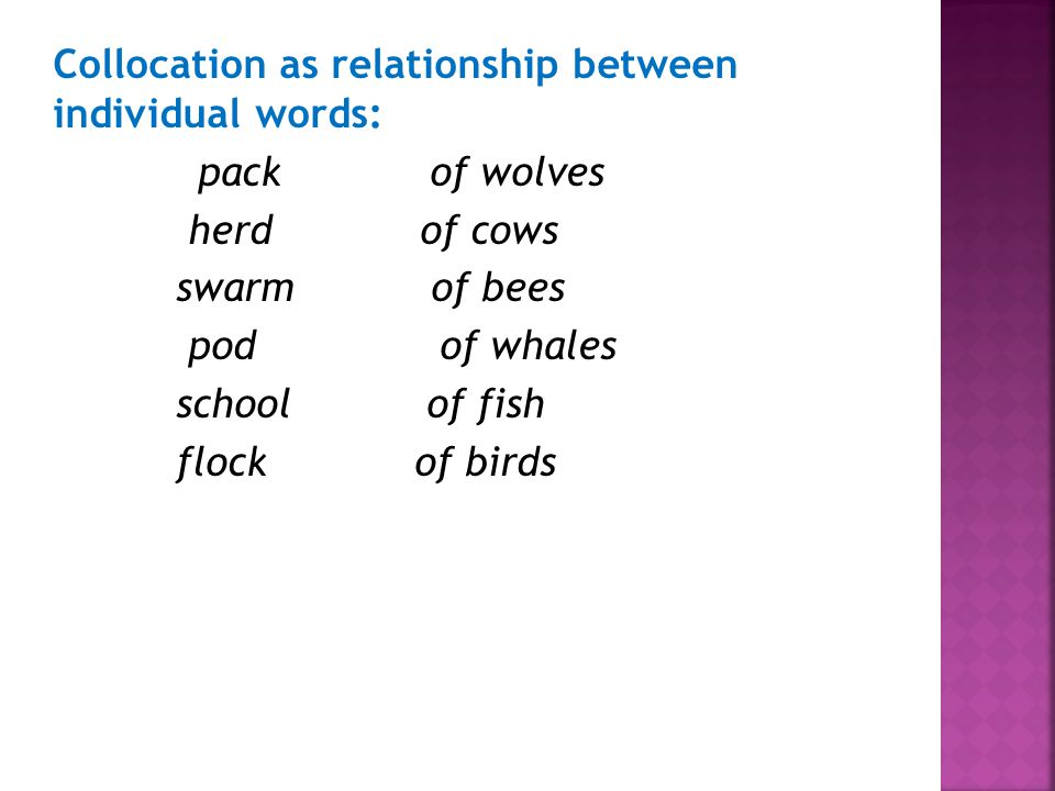 Collocation as relationship between individual words: pack of wolves herd of cows swarm of bees pod of whales school of fish flock of birds