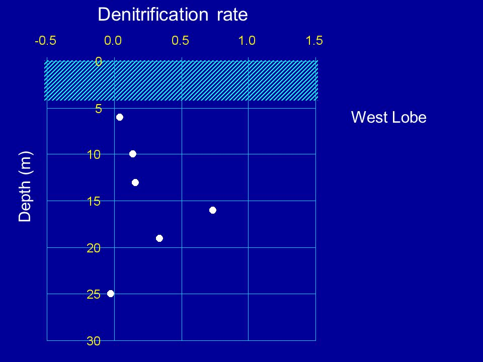 Depth (m) West Lobe Denitrification rate