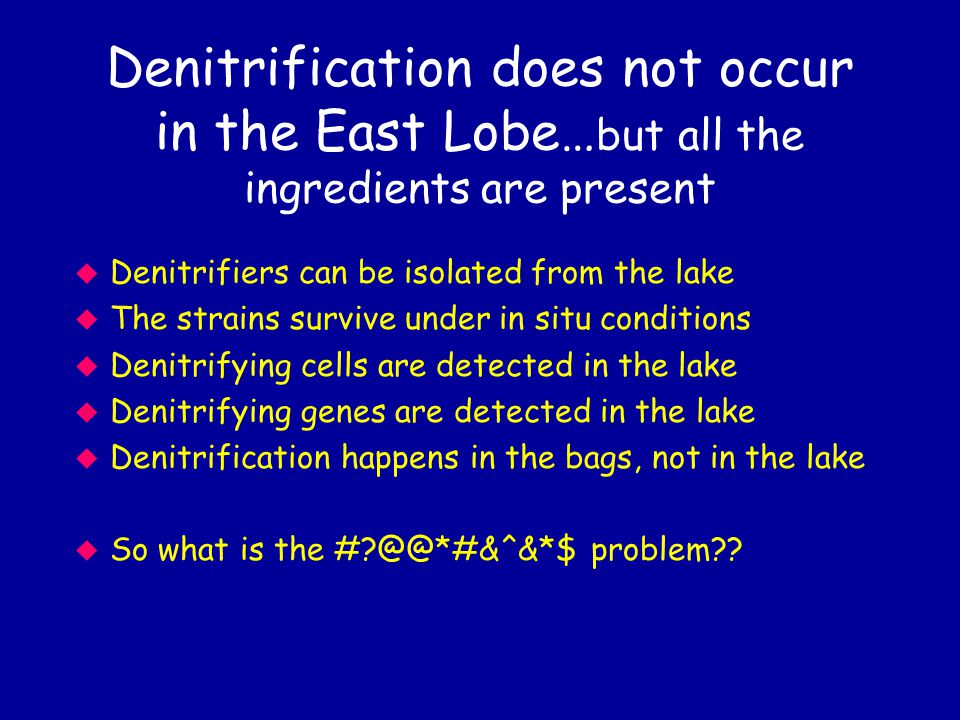 Denitrification does not occur in the East Lobe… but all the ingredients are present u Denitrifiers can be isolated from the lake u The strains survive under in situ conditions u Denitrifying cells are detected in the lake u Denitrifying genes are detected in the lake u Denitrification happens in the bags, not in the lake u So what is the # @@*#&^&*$ problem