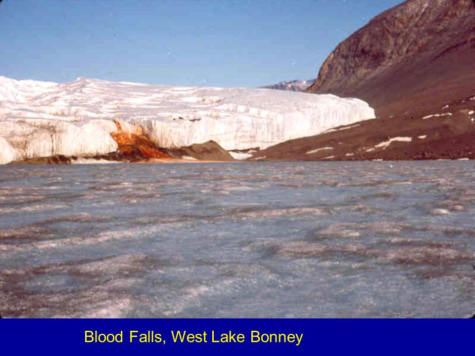 Blood Falls, West Lake Bonney