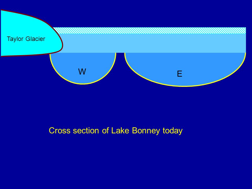Cross section of Lake Bonney today W E Taylor Glacier