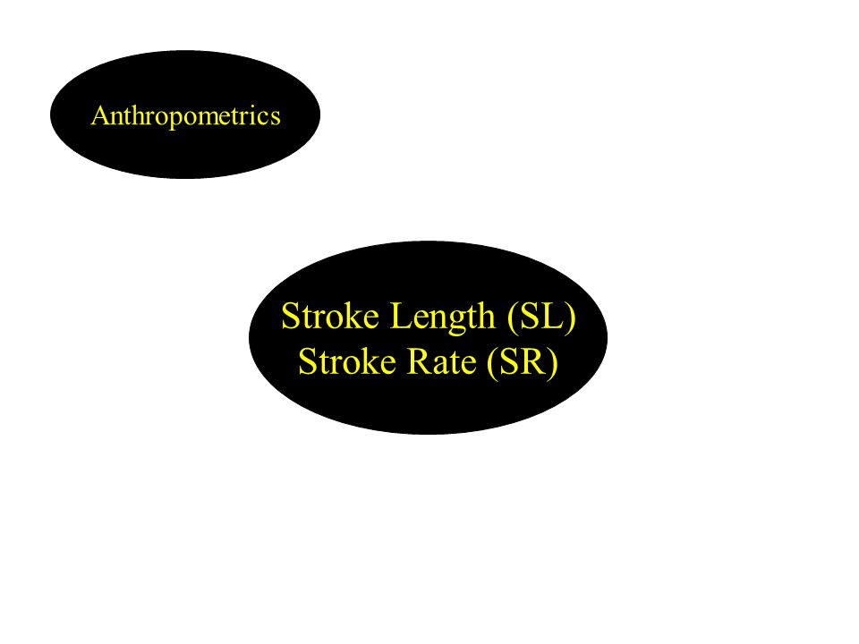 Stroke Length (SL) Stroke Rate (SR) Anthropometrics