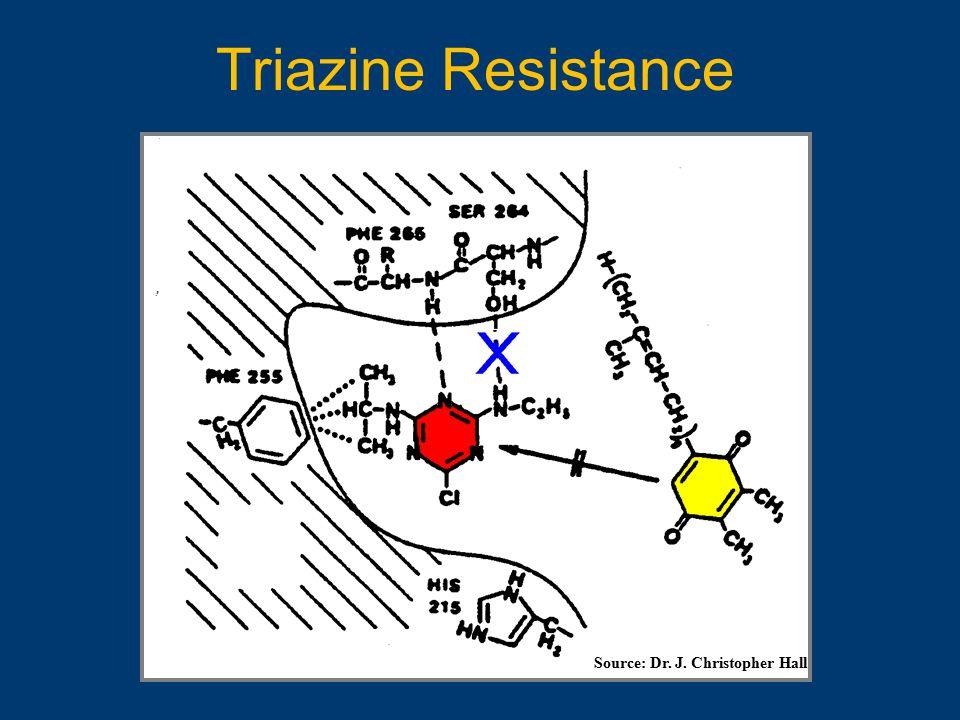 Triazine Resistance Source: Dr. J. Christopher Hall