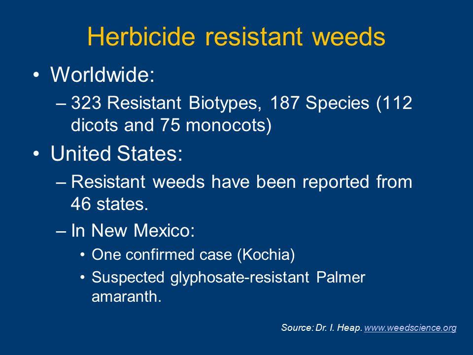 Herbicide resistant weeds Worldwide: –323 Resistant Biotypes, 187 Species (112 dicots and 75 monocots) United States: –Resistant weeds have been repor