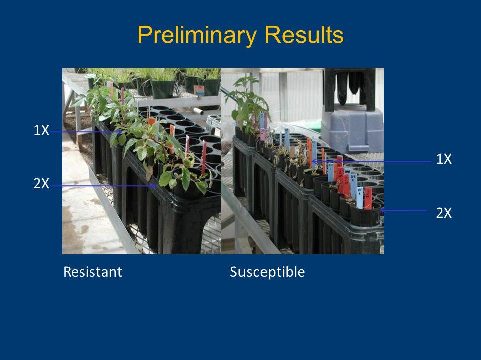 Preliminary Results ResistantSusceptible 2X 1X