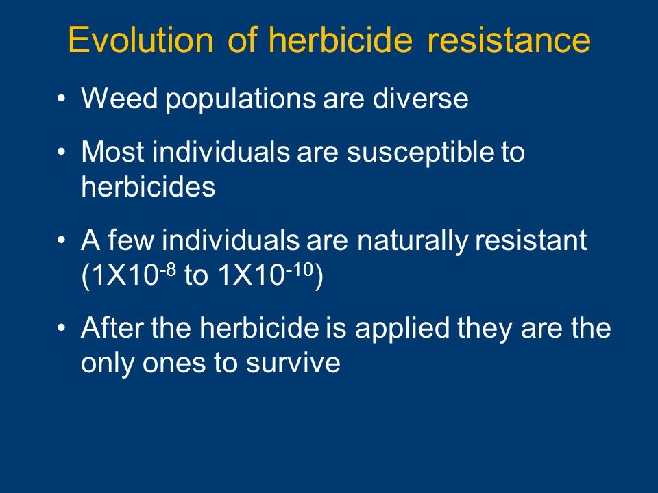 Evolution of herbicide resistance Weed populations are diverse Most individuals are susceptible to herbicides A few individuals are naturally resistan