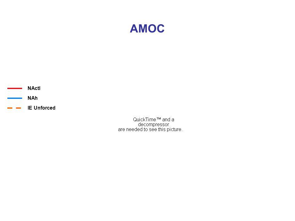 AMOC NActl NAh IE Unforced