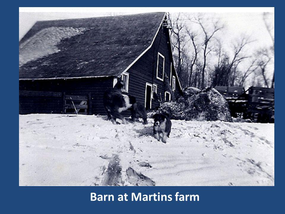Barn at Martins farm