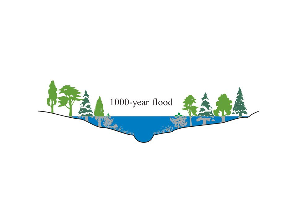 1000-year flood