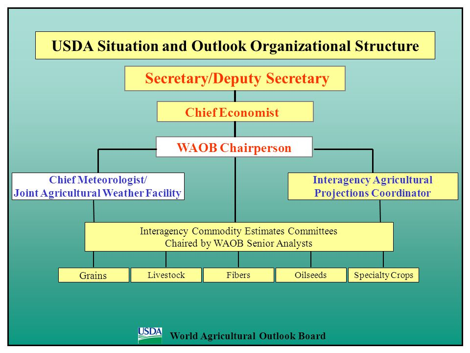 Interagency Agricultural Projections Coordinator Chief Economist Secretary/Deputy Secretary USDA Situation and Outlook Organizational Structure WAOB C