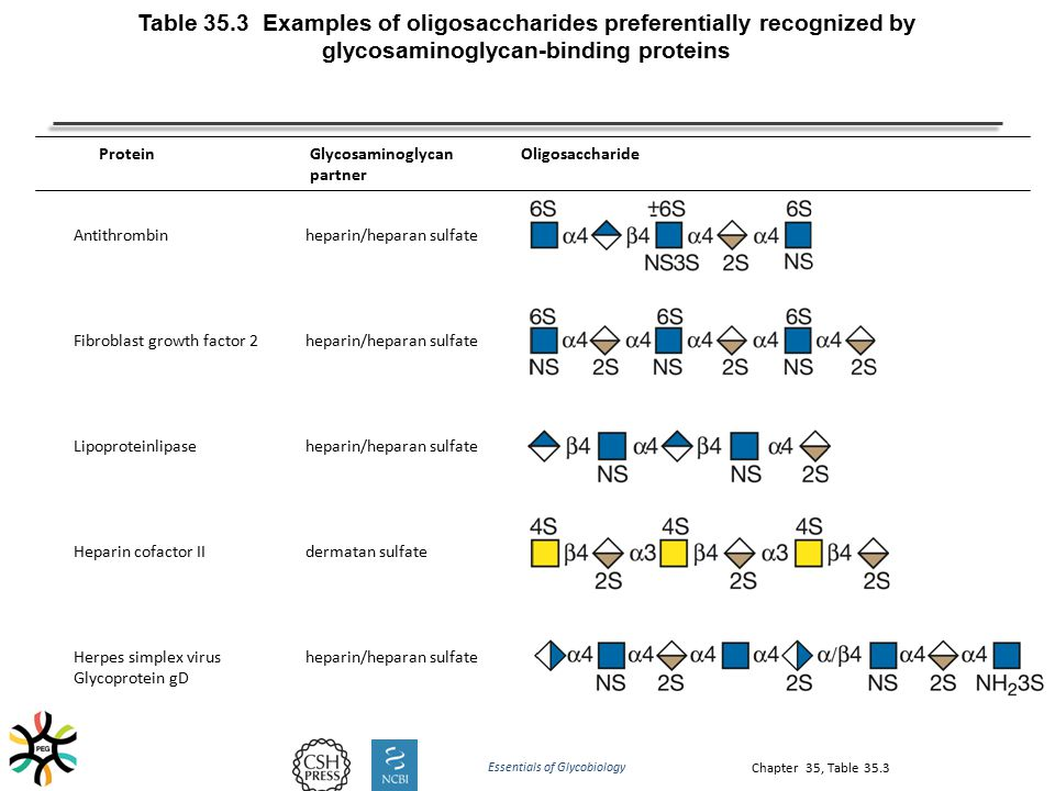 Chapter 35, Table 35.3 Table 35.3 Examples of oligosaccharides preferentially recognized by glycosaminoglycan-binding proteins Antithrombinheparin/hep