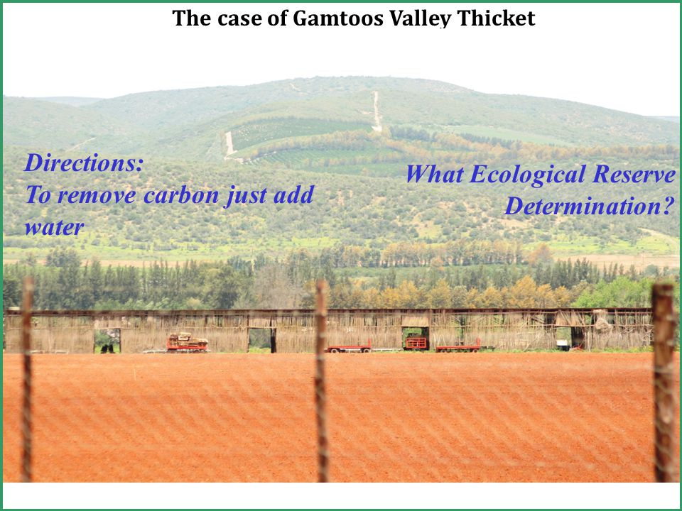 The case of Gamtoos Valley Thicket Directions: To remove carbon just add water What Ecological Reserve Determination