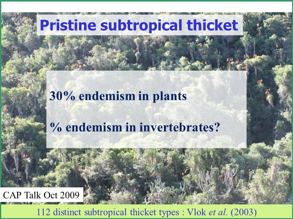Degraded Subtropical thicket Overgrazed – Aucamp 1979, Acocks 1988 Neglected and abused – Hoffman & Everard 1987 desertification – Kerley et al.