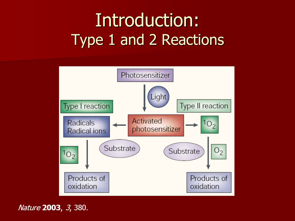 Introduction: Type 1 and 2 Reactions Nature 2003, 3, 380.
